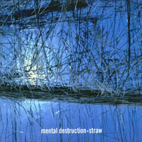 Mental Destruction