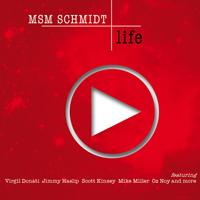 MSM Schmidt