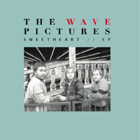 Wave Pictures