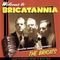 Bricats