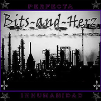 Bits-And-Herz