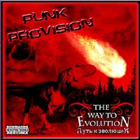 Punk Provision