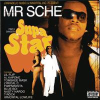 Mr. Sche