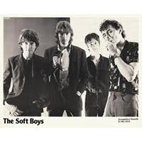 Soft Boys