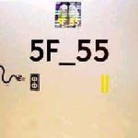 5F_55