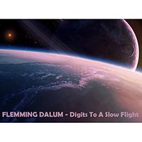 Dalum, Flemming