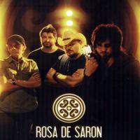 Rosa de Saron (BRA)