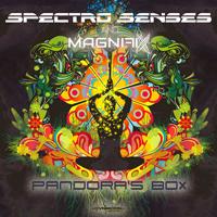 Spectro Senses