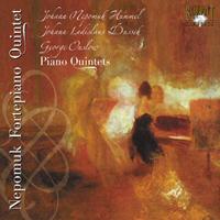 Nepomuk Fortepiano Quintet