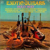 Exotic Guitars