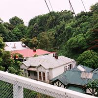 Open (NZL)