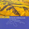 Far From The Maddening Crowds (1997 re-release)-Chicane (Nicholas Bracegirdle)