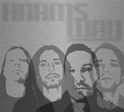 Harm's Way (Swe)