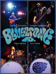 Bluestone Company