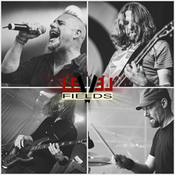 Level Fields