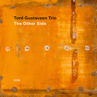 Tord Gustavsen Trio - The Other Side