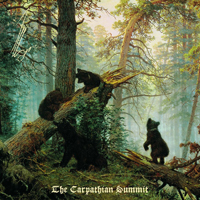 Molfars, druids and fairies held a meeting in the Carpathians